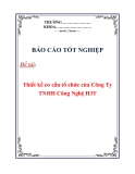 """Báo cáo tốt nghiệp """"Thiết kế cơ cấu tổ chức của Công Ty TNHH Công Nghệ H3T"""""""