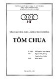 Tiểu luận công nghệ lên men truyền thống: Tôm chua