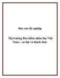 Báo cáo tốt nghiệp: Thị trường Bảo hiểm nhân thọ Việt Nam – cơ hội và thách thức
