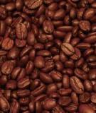 Phân tích chuỗi giá trị ngành cà phê