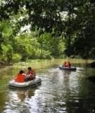 Thực trạng phát triển du lịch sinh thái ở Việt Nam