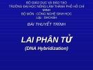 Bài thuyết trình Lai phân tử