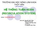 Hệ thống tuần hoàn(Recirculation System)