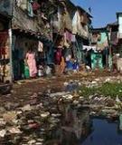 Ô nhiễm đất vấn đề đáng quan tâm