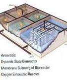 Công nghệ xử lý nước và giải pháp