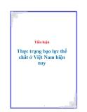 Tiểu luận Thực trạng bạo lực thể chất ở Việt Nam hiện nay