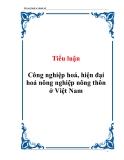 Tiểu luận Công nghiệp hoá, hiện đại hoá nông nghiệp nông thôn ở Việt Nam