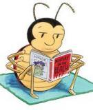 Cách đọc sách tiếng Anh