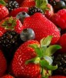 12 thực phẩm trường sinh bất lão