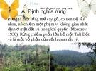 Thực trạng khai thác tài nguyên rừng ở Việt Nam và trên thế giới hiện nay