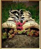 10 Quy luật của cuộc sống