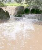 Đề tài nghiên cứu thực trạng về môi trường ở Cà Mau hiện nay