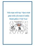 """Tiểu luận triết học """"Quá trình phát triển nền kinh tế nhiều thành phần ở Việt Nam"""""""