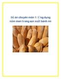 Đồ án chuyên môn 1: Ứng dụng nấm men trong sản xuất bánh mì