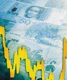 Các yếu tố gia tăng lạm phát 2010