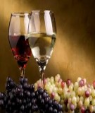 Ứng dụng lên men etanol để sản xuất rượu