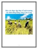 Báo cáo thực tập thực tế môi trường các tỉnh đồng bằng sông Cửu Long