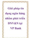 Giải pháp tín dụng ngân hàng nhằm phát triển DNV&N tại VP Bank