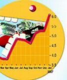 Tiểu luận: Thực trạng lạm phát ở Việt Nam năm 2008 và biện pháp giải quyết