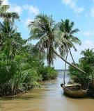 Đặc điểm văn hóa Đồng Bằng Sông Cửu Long