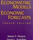 Sổ tay Kinh tế lượng- Lý thuyết thống kê và Kinh tế lượng