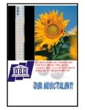 Kế hoạch truyền thông chương trình DBA Music Talent 2010