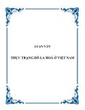 """Luận văn """"Hiện tượng đô la hóa ở Việt Nam"""""""