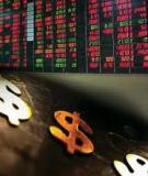 Bài tập môn thị trường chứng khóan kèm theo lời giải