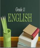 Giáo án Tiếng Anh lớp 11