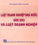 Luật Doanh nghiệp nhà nước năm 2003
