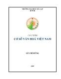 Giáo trình Cơ sở văn hóa Việt Nam - Lê Chí Dũng