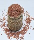 Khéo tay làm món chay từ gạo lứt