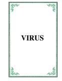 Đại cương Virus