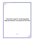 """Đề tài """"Tự do hóa trong EU và khả năng thâm nhập thị trường EU của hàng hoá Việt Nam"""""""