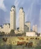 Chương 2: Đô thị hoá và quá trình phát triển đô thị