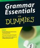 Grammar Essentials For Dummies - Ngữ pháp cơ bản cho người mới học
