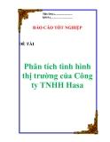 """Luận văn:  """"Phân tích tình hình thị trường của Công ty TNHH Hasa"""""""