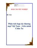 """Luận văn:  """" Phân tích hợp tác thương mại Việt Nam – Liên minh Châu Âu """""""
