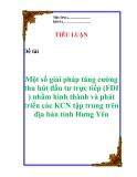 """Tiểu luận: """"Một số giải pháp tăng cường thu hút đầu tư trực tiếp (FDI ) nhằm hình thành và phát triển các KCN tập trung trên địa bàn tỉnh Hưng Yên """""""