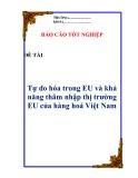"""Luận văn:  """"Tự do hóa trong EU và khả năng thâm nhập thị trường EU của hàng hoá Việt Nam"""""""