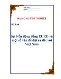 """Tiểu luận:"""" Sự biến động đồng EURO và một số vấn đề đặt ra đối với Việt Nam """""""