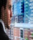 Đầu tư chứng khoán nước ngoài  - FPI