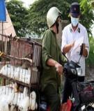 Đăng ký kiểm dịch nhập khẩu sản phẩm động vật dùng cho người nhập khẩu vào Việt Nam