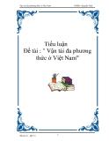"""Tiểu luận """" Vận tải đa phương thức ở Việt Nam"""""""