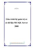 Giáo trình hệ quản trị cơ sở dữ liệu MS SQL Server 2000 - Hoàng Danh Long