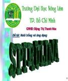 Nuôi trồng và ứng dụng tảo Spirulina