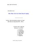"""Đề tài """" Phân tích tình hình tài chính CTCP Nhựa Bình Minh (mã chứng khoán BMP _ HOSE) """""""