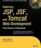 Beginning JSP, JSF and TomCat Web development