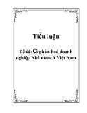"""Tiểu luận """"Cổ phần hoá doanh nghiệp Nhà nước ở Việt Nam"""""""