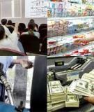 Báo cáo Kinh tế Việt Nam năm 2008 và 2009